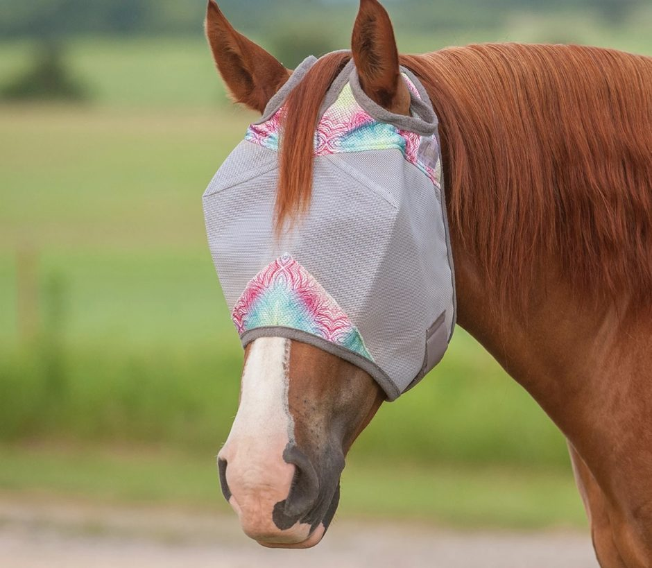 Fly Mask For Your Horse